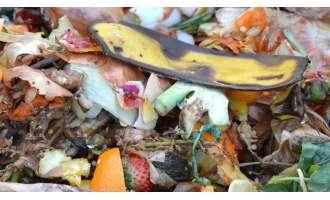 Ανακύκλωση – Κομποστοποίηση στο σπίτι πως γίνεται - Δ.Α.Π.Π.Ο.Σ.